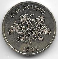 *Guernsey 1 Pound  1981  Km 37 - Guernesey