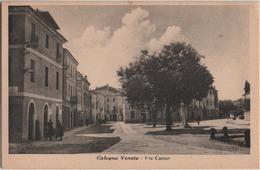 Cologna Veneta (Verona): Via Cavour. Formato Piccolo Non Viaggiata - Verona