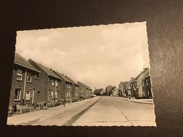 """Oostnieuwkerke - Oost Nieuwkerke - Nieuwe Wijk """"engelshof"""" - (Staden)  Uitg. H. Verhalleman - Foto Blitz Berchem - Staden"""