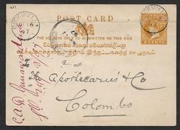 1897 CEYLON 2C PSC - DICKWELLA To COLOMBO. From MEDICAL HALL DICKWELLA - Ceylon (...-1947)