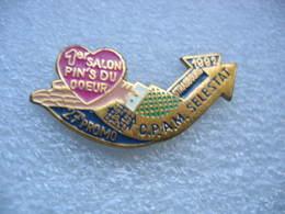 Pin's Du 1er Salon Du Pin's Du Coeur Organisé Par La CPAM De SELESTAT (Dépt 67) à STRASBOURG En 1992 - Pins