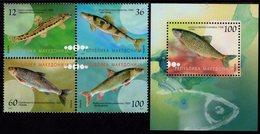 Macedonia - 2007 - Fish - Mint Stamp Set + Souvenir Sheet - Macedonia