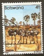 Botswana  1982  SG  518 Ostriches     Fine Used - Straussen- Und Laufvögel