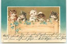 N°14039 - Chats Derrière Une Palissade - Katten