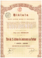 Titre Ancien - Biélaïa Société Anonyme Minière Et Industrielle (Donetz) - Titre De 1914 - Actions N°s 190376 à 190400 - Russie