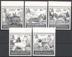 V845 MONTSERRAT FAUNA PETS DOGS 1SET !!! MICHEL 12 EURO !!! MNH - Hunde