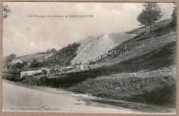 36 / Environs De SAINT-GAULTIER - Les Pâturages (+ Troupeau Vaches, âne, Moutons) St - Francia