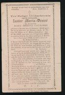 ZUSTER MARIA DESIRE / MARIA VAN HAMME - BRUSSEL 1842 - BAARLE 1896 - Décès