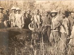 Photographie Ancienne D'Indochine, Chasse Au Buffle En Annam, Cliché Vers 1925, Vietnam - Lieux