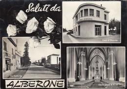 ALBERONE-FERRARA-SALUTI DA-INSEEGNA SALI E TABACCHI-CARTOLINA VERA FOTOGRAFIA  VIAGGIATA IL 27-4-1964 - Ferrara