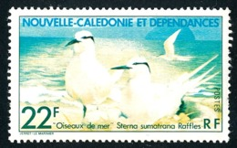 NOUV.-CALEDONIE 1978 - Yv. 416 * 2e Choix  Cote= 3,00 EUR - Oiseau Sterna Sumatrana Raffles  ..Réf.NCE25159 - Nueva Caledonia