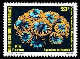 NOUV.-CALEDONIE 1979 - Yv. 434 **  - Coraux Fluorescents  ..Réf.NCE25174 - Neukaledonien