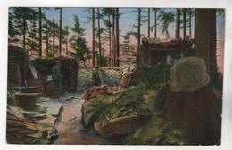 2800, Feldpostkarte, Vogesen - Oorlog 1914-18