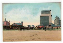 Loading Wheat Into Elevators In Manitoba  On Line Of Canadian Pacific Railway 1908 - Other