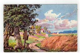RICHARD WAGNER 1911 - Künstlerkarten