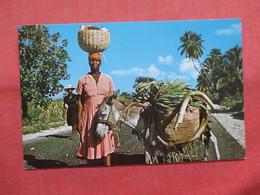 Marchande On St Marc Road  Haiti    Ref 3793 - Haiti