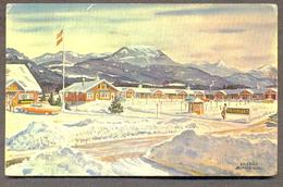 USA WHITEFACE SKI ICE ADIRONDACK SNOWMOUNT TIROLERLAND SASCHA MAURER FLG - United States