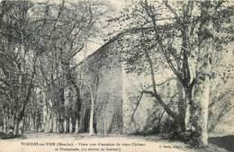 50 , TORIGNI-SUR-VIRE ,  , Murs D'enceinte Du Vieux Chateau , * 421 27 - Francia