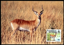 98792) Botswana - 1988 WWF 068 - Mi 431 / 434 - 4 MC/MK - Der Rote Litschi - Botswana (1966-...)