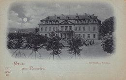 Gruss Aus Neuwied Furstliches Schloss German Antique Postcard - Allemagne
