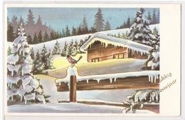 BA 300  OLD FANTASY POSTCARD , GREETINGS , BONNE ANNEE , GELUKKIG NIEUWJAAR - New Year