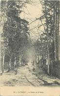 - Morbihan - Ref-D809- Le Faouet - Le Chemin De Sainte Barbe - Ste Barbe - Edit. Framba N° 142 - - Le Faouet
