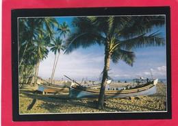 Modern Post Card Of Sabak Fishing Village,Kota Baru,Malaysia,D40. - Malaysia