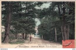 CHAMPROSAY FORET DE SENART ROUTE DE DRAVEIL 1930 TBE - France