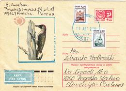 SSSR / RUSSIA, Birds, Green Woodpecker - Lettres & Documents