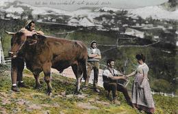 LANDWIRTSCHAFT → Sennen Auf Der Alp / Pâtres Au Chalet Anno 1916 - Suisse