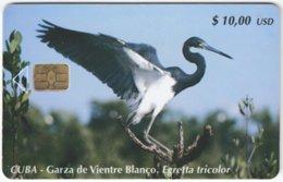 CUBA A-189 Chip Etecsa - Animal, Bird - Used - Cuba