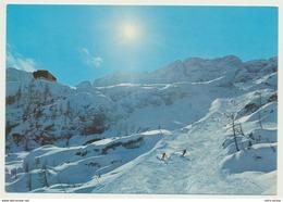 Sella Nevea Alpi Giulie Pista Del Canin Skigelände  VB1979 HI2640 - Udine