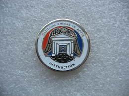 Pin's Militaire Du 8e Hussards à ALTKIRCH (Dépt 68). Caudium Animar In Actis Instruction - Militair & Leger