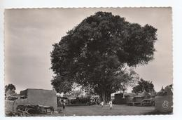 BAMAKO ET ENVIRONS N° 14 (SENEGAL) - LA GRANDE PLACE A SANANKORO - Senegal