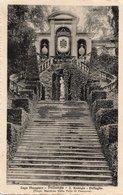 PALLANZA - LAGO MAGGIORE - SAN REMIGIO - FORMATO PICCOLO - VIAGGIATA 1920 - (rif. B22) - Verbania