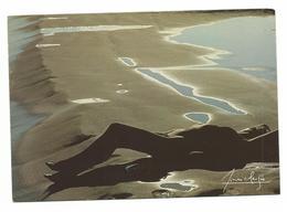 NU PHOTO SIGNE LUCIEN CLERGUE - CARTE ECRITE - Voir Detail Annonce - Nudi Adulti (< 1960)