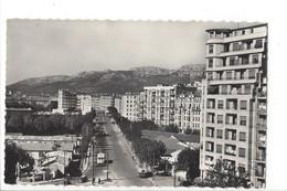 24090   - Toulon Le Champ De Mars Tram - Toulon