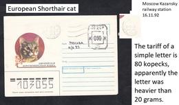 1992 .RUSSIA . Cat. - Gatos Domésticos