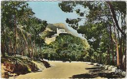 Algerie  Oran  Le Belvedere - Oran