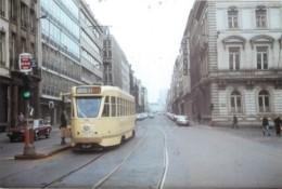 Belgique - Bruxelles - Photo - Format  Carte-Postale - Tram N° 93 - Nahverkehr, Oberirdisch