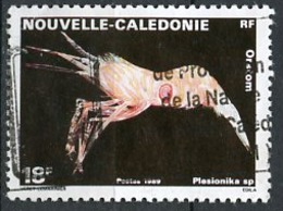 Nouvelle Calédonie - Neukaledonien - New Caledonia 1989 Y&T N°576 - Michel N°849 (o) - 18f Plesionika - Used Stamps