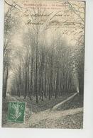 BEAUMONT SUR OISE - Un Carrefour Dans La Forêt De Carnelle - Beaumont Sur Oise