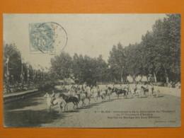 #63570, Algeria, Blida, Anniversaire De La Décoration De L'Etendard Du 1er Chasseur D'Afrique - Blida