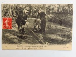 C. P. A. : 40 LANDES : Chasse Aux Palombes, Un Coup De Filet, Timbre En 1907 - Unclassified