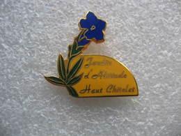 Pin's D'une Belle Fleur Bleue En Provenance Du Jardin D'altitude Du Haut Chitelet Au Coeur Du Massif Vosgien - Badges