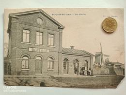 Berlaer-bij-Lier, De Statie,Berlaar,  1910 - Berlare