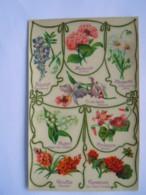Langage Des Fleurs Carte Glacée Glyeine Hortensia Margherite Orchidées Muguet Cyclamen Edit. K.F. Paris Série 1863 Bis - Flores