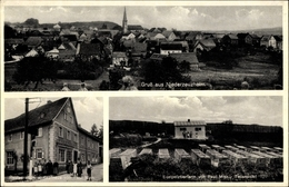 Cp Niederzeuzheim Hadamar, Restaurant, Kaufhaus Und Edelpelztierfarm Von Paul Mink, Anwohner - Allemagne