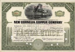 Titre De Bourse Made In USA - NEW CORNELIA COPPER COMPANY - 1924. - Mines