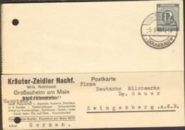 Alli.Bes 12 Pfg.Ziffer Auf Postkarte Aus Großauheim Von 1946 Einkreisstegstempel - American,British And Russian Zone